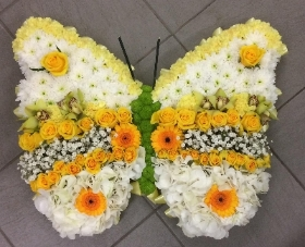 Citrus Butterfly Tribute
