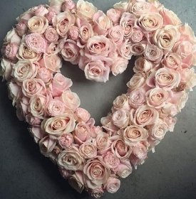 Pink Avalanche Rose Heart